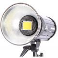 Светодиодный осветитель FST EF-200 Sun Light 5500K