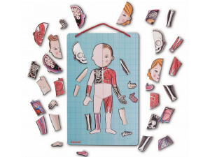 Janod Карточки с магнитными пазлами Части тела
