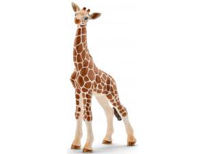 Schleich Детеныш жирафа - фигурка