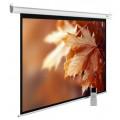 Экран для проектора Cactus MotoExpert CS-PSME-280x175-WT