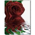 Schipper Отражение розы, холст - раскраска по номерам, 60х80 см
