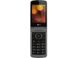 Мобильный телефон LG G360 Титан серый