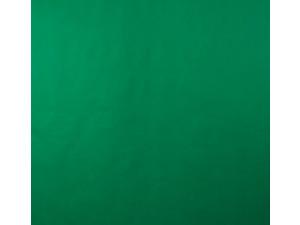 Фотофон Lumifor LBGN-1520 Green 150х200см нетканый зеленый