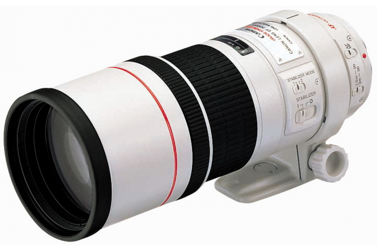 Canon EF 300mm f/4L IS USM X1626