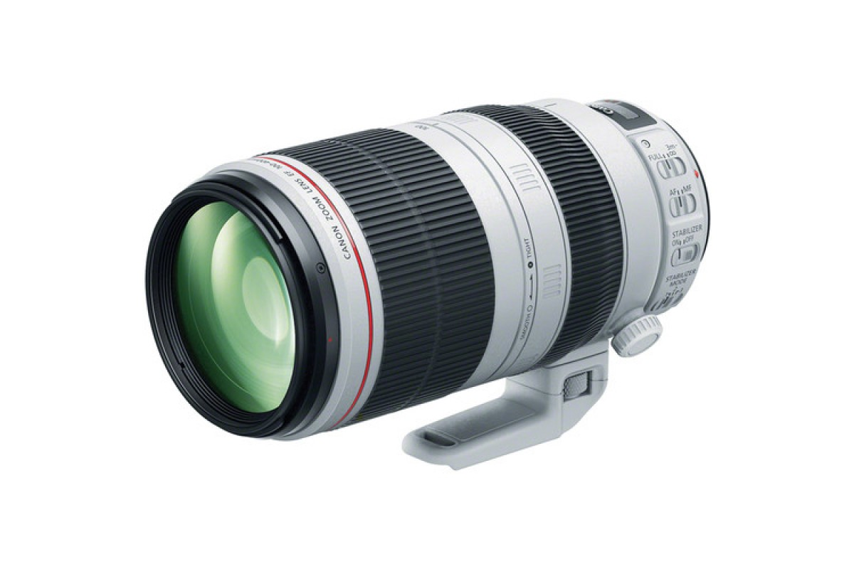 Canon EF 100-400mm f/4.5-5.6L IS USM X4267