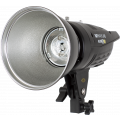 Импульсный моноблок Raylab Axio III RX-400