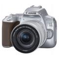 Зеркальный фотоаппарат Canon EOS 250D Kit 18-55 IS STM серебро