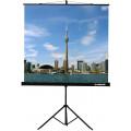 Экран на штативе Lumien Eco View 200x200 см (LEV-100103)