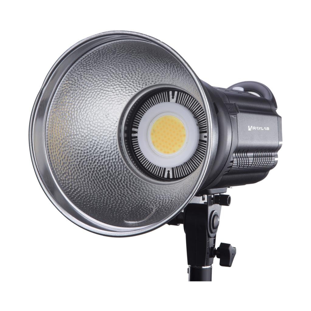 Осветитель светодиодный Raylab RL-100 Sunlight 3200-6500K с сумкой