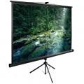 Экран для проектора Cactus TriExpert CS-PSTE-220X165-BK