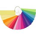 Цветовой справочник Pantone F+H nylon brights set