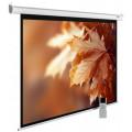 Экран для проектора Cactus MotoExpert CS-PSME-300x188-WT