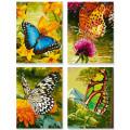 Schipper Бабочки - набор из 4 раскрасок по номерам, 18х24 см