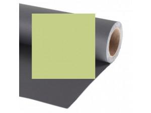 Фон бумажный Raylab 019 Tropical Green светло-зеленый 2.72x11 м