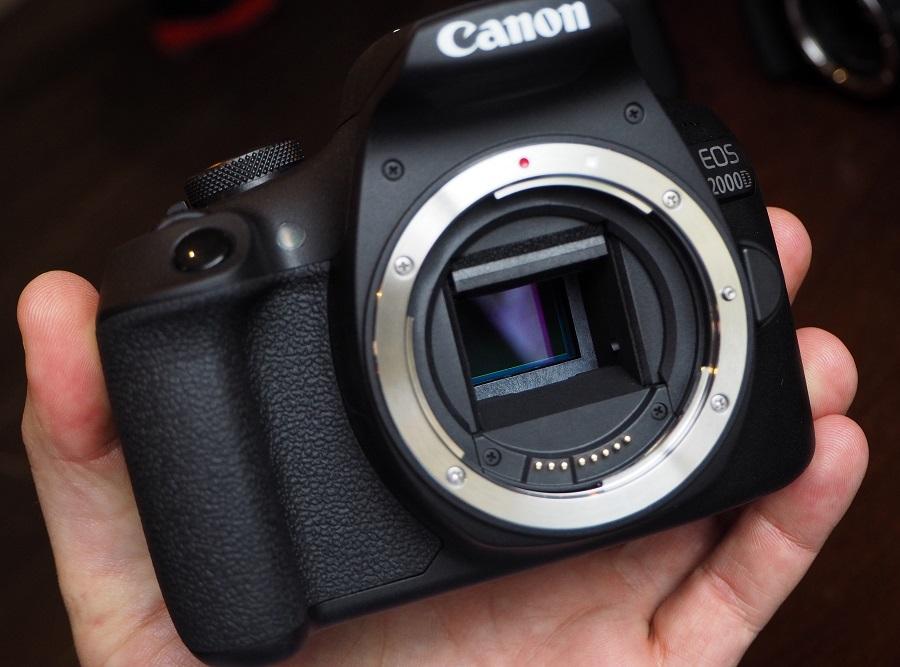 highres-Canon-EOS-2000D-24mp-13_1519291407.jpg